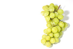 Uvas sem sementes verdes doces na videira Fotografia de Stock Royalty Free