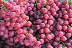 Uvas sin semillas rojas Imagen de archivo