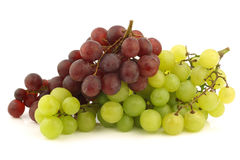 Uvas sin semillas rojas y blancas frescas en la vid Foto de archivo libre de regalías