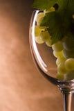 Uvas sobre el vidrio de vino Imágenes de archivo libres de regalías