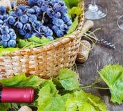 Uvas, uma garrafa do vinho, cortiça e corkscrew em uma tabela velha de madeira, estilo rústico Imagens de Stock