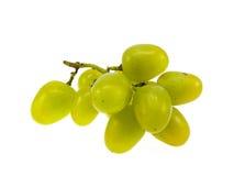 Uvas verdes Imágenes de archivo libres de regalías