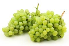 Uvas verdes Fotografía de archivo