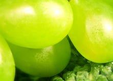 Uvas verdes Fotos de archivo libres de regalías