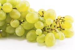 Uvas verdes aisladas en blanco Imágenes de archivo libres de regalías