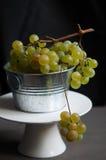 Uvas verdes frescas Foto de Stock