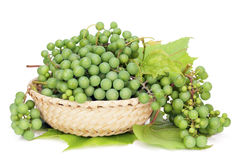 Uvas verdes para el vino seco Fotos de archivo