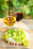 Uvas verdes y dos vidrios del vino blanco y rojo en el VI Fotos de archivo libres de regalías