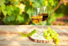 Uvas verdes y dos vidrios del vino blanco y rojo en el VI Imagen de archivo