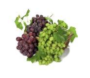 Uvas vermelhas e brancas Fotografia de Stock