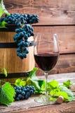 Uvas vermelhas e um vidro do vinho tinto Imagens de Stock Royalty Free