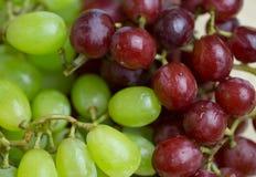 Uvas vermelhas e verdes Fotos de Stock Royalty Free