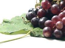 Uvas vermelhas em uma folha Fotografia de Stock