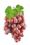Uvas vermelhas maduras isoladas Imagens de Stock Royalty Free