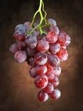 Uvas vermelhas no muslin escuro Fotos de Stock Royalty Free