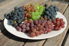 Uvas vermelhas, roxas e verdes em uma placa branca em um dia ensolarado Foto de Stock