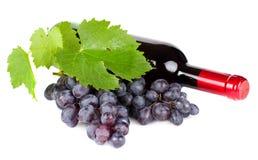 Uvas y botella de vino rojo Fotografía de archivo