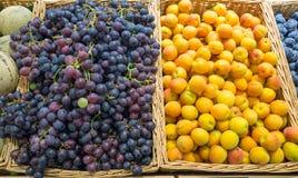 Uvas y ciruelos amarillos Fotografía de archivo libre de regalías