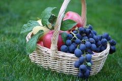 Uvas y manzanas en la cesta Fotos de archivo libres de regalías