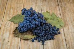 Uvas y pasas negras Fotografía de archivo libre de regalías