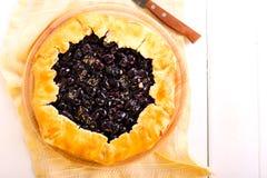 Uvas y tarta negras del romero Fotos de archivo libres de regalías