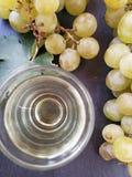 Uvas y vidrio de vino seco Imágenes de archivo libres de regalías