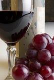 Uvas y vino Imagen de archivo libre de regalías