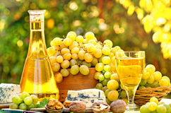 Uvas y vino blanco Imagen de archivo