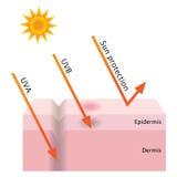 UVpenetratie en zonbescherming vector illustratie