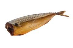 Uwędzona makrela odizolowywająca na bielu Obrazy Stock