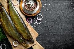 Uwędzona ryba na papierze z pikantność i cebulkowymi pierścionkami zdjęcia royalty free