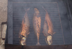 Uwędzona makrela Zdjęcia Stock