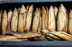 Uwędzona ryba Fotografia Royalty Free
