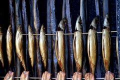 Uwędzona ryba obraz stock