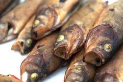 Uwędzona ryba Zdjęcia Royalty Free
