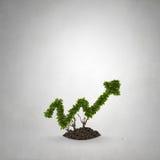 Uw inkomensgroei Royalty-vrije Stock Fotografie