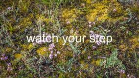 uważaj na swój krok Zdjęcia Stock