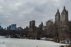 UWS from the park Stock Images
