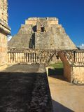 Uxmal mayan konst Arkivbilder