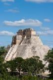 uxmal mayan mexic pyramid Arkivbild
