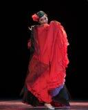 The Uygur girl--Chinese folk dance Stock Image