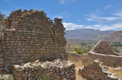 UyoUyo archeologische muur Stock Foto