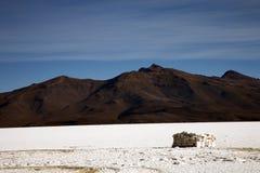 uyuni της Βολιβίας de salar Στοκ Φωτογραφία