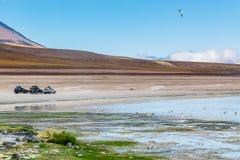 Uyuni, Bolivia. Green Lagoon laguna Verde,Uyuni, Bolivia Stock Photography