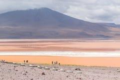 Uyuni, Bolivia. Laguna Colorada, Salar de Uyuni, Bolivia Royalty Free Stock Photography