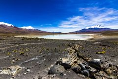 Charcota Lagoon at Bolivian Altiplano in the way to Uyuni Saltflats, Bolivia royalty free stock images