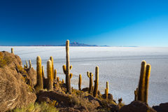Uyuni Salt Flat on the Bolivian Andes at sunrise Stock Photo