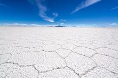 Uyuni Salt Flat Details Stock Image
