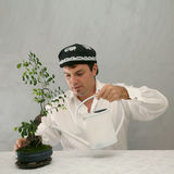 Uzbek hut, man and bonsai Stock Image