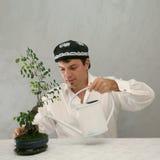 Uzbek hut, man and bonsai Stock Image